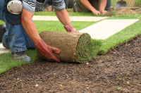 It's the perfect time to lay new lawns right now