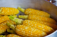 Plant a classic American Indian combination of squash, beans and corn