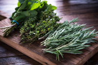 Right now is the perfect time to pick herbs